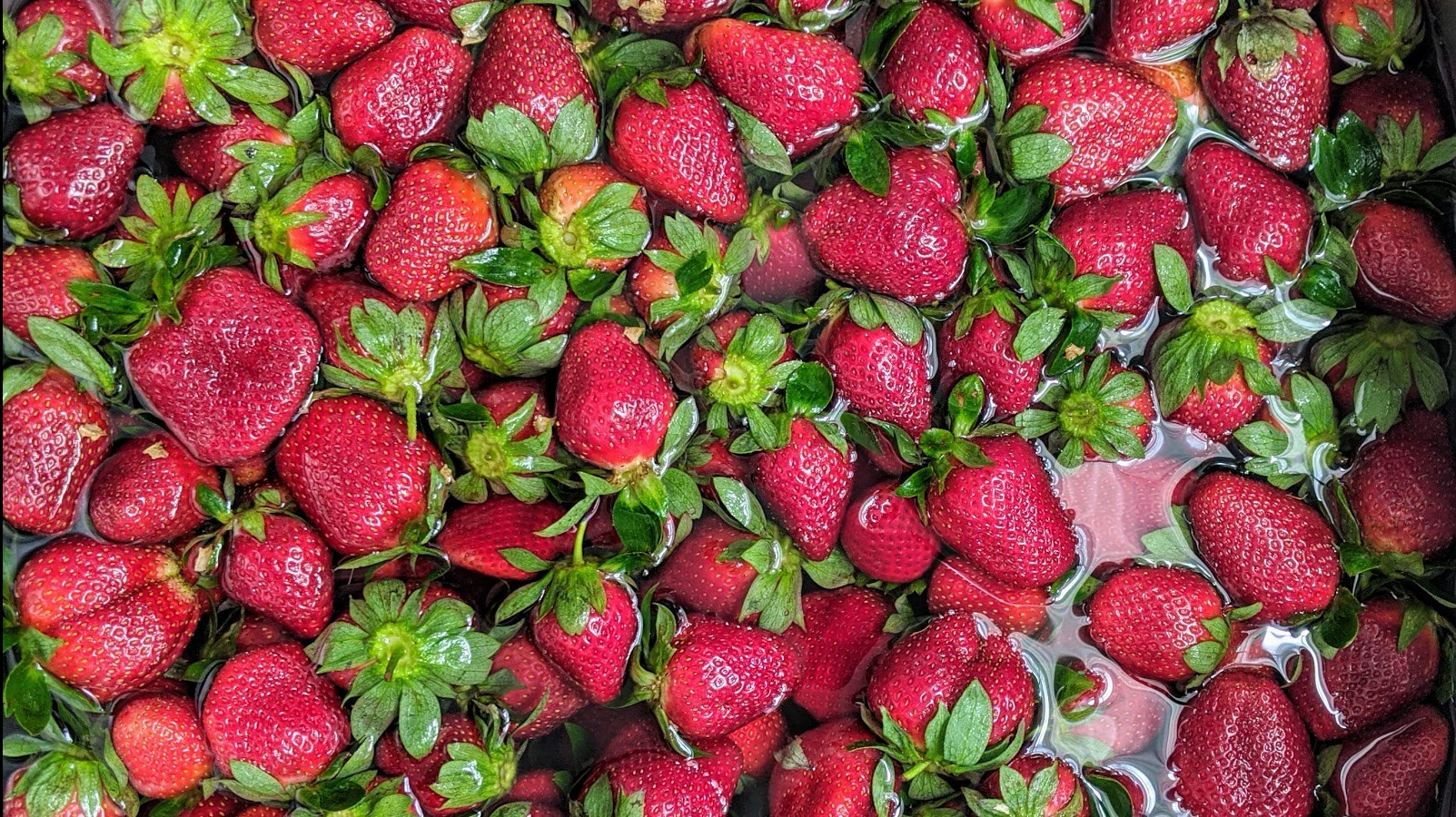 Strawberries + Recipe for Spicy Strawberry Simple Syrup